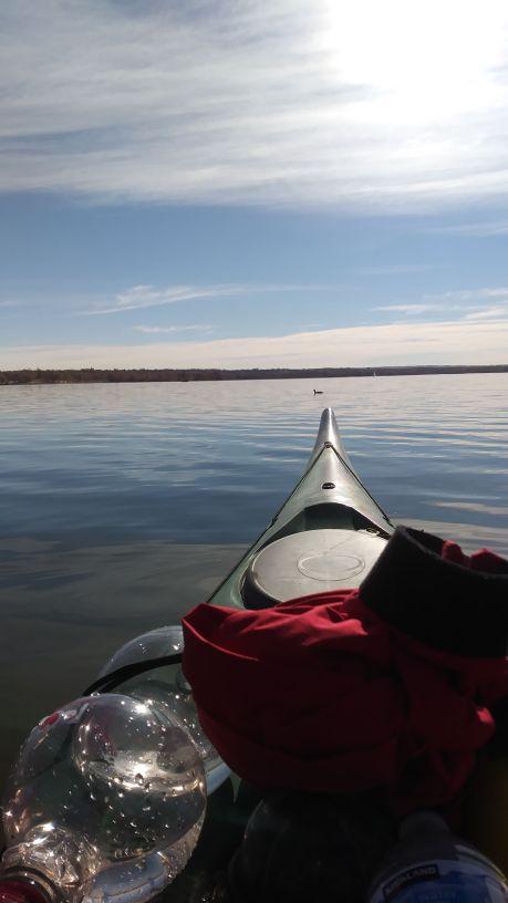kayak duck waterbottle